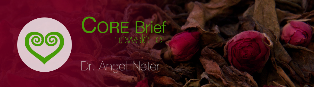 CORE Newsletter Winter 2014 SES Methode Angeli Neter Hannover