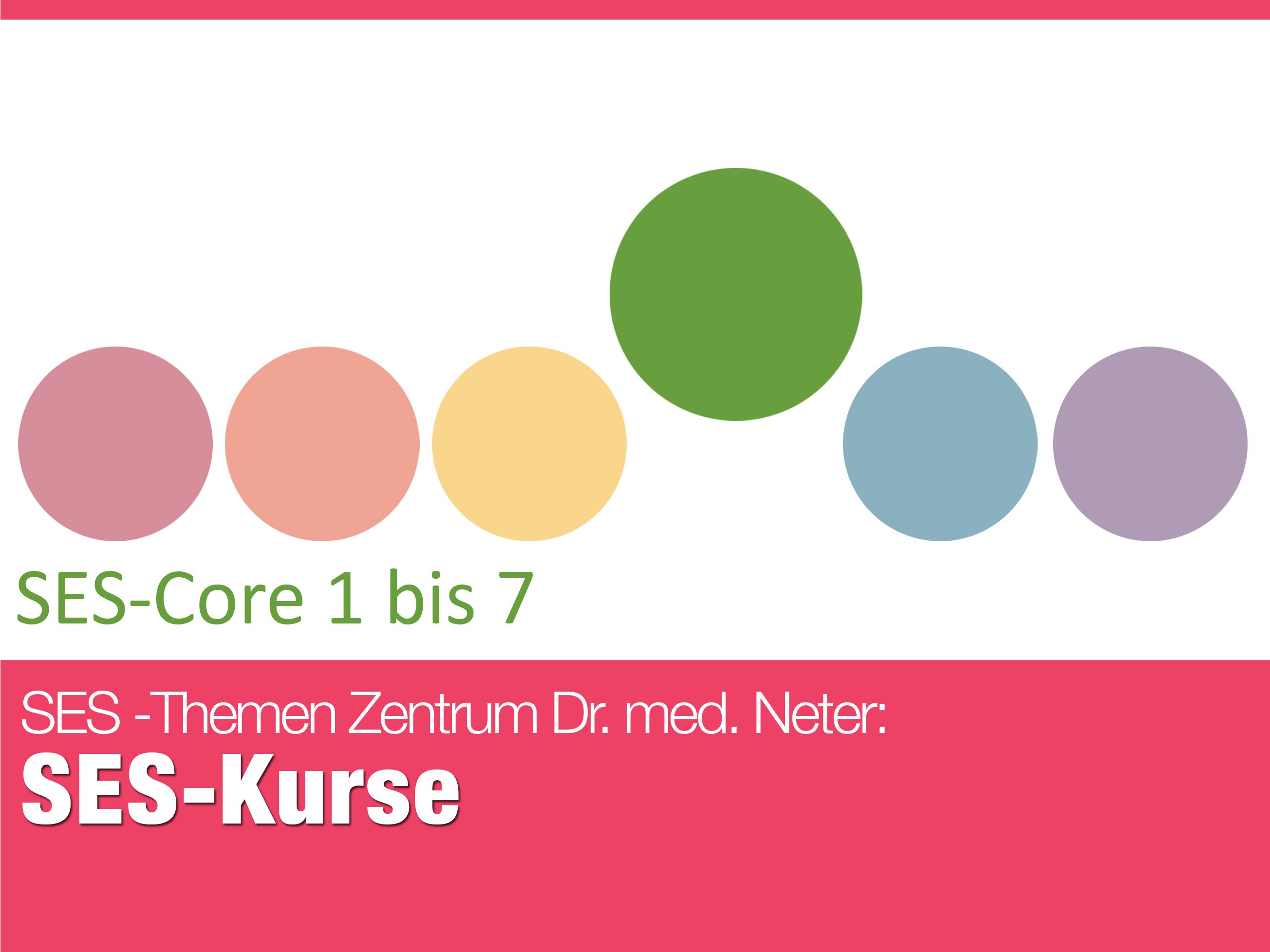 151110_SES_SES-Core1bis7