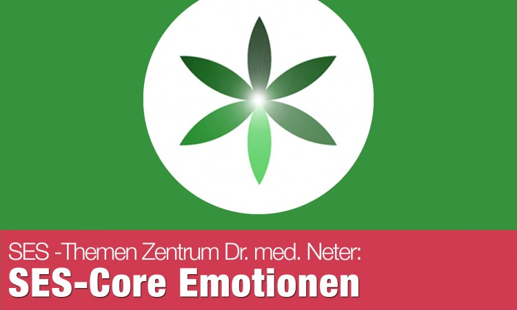 151110_SES_Core_Emotionen
