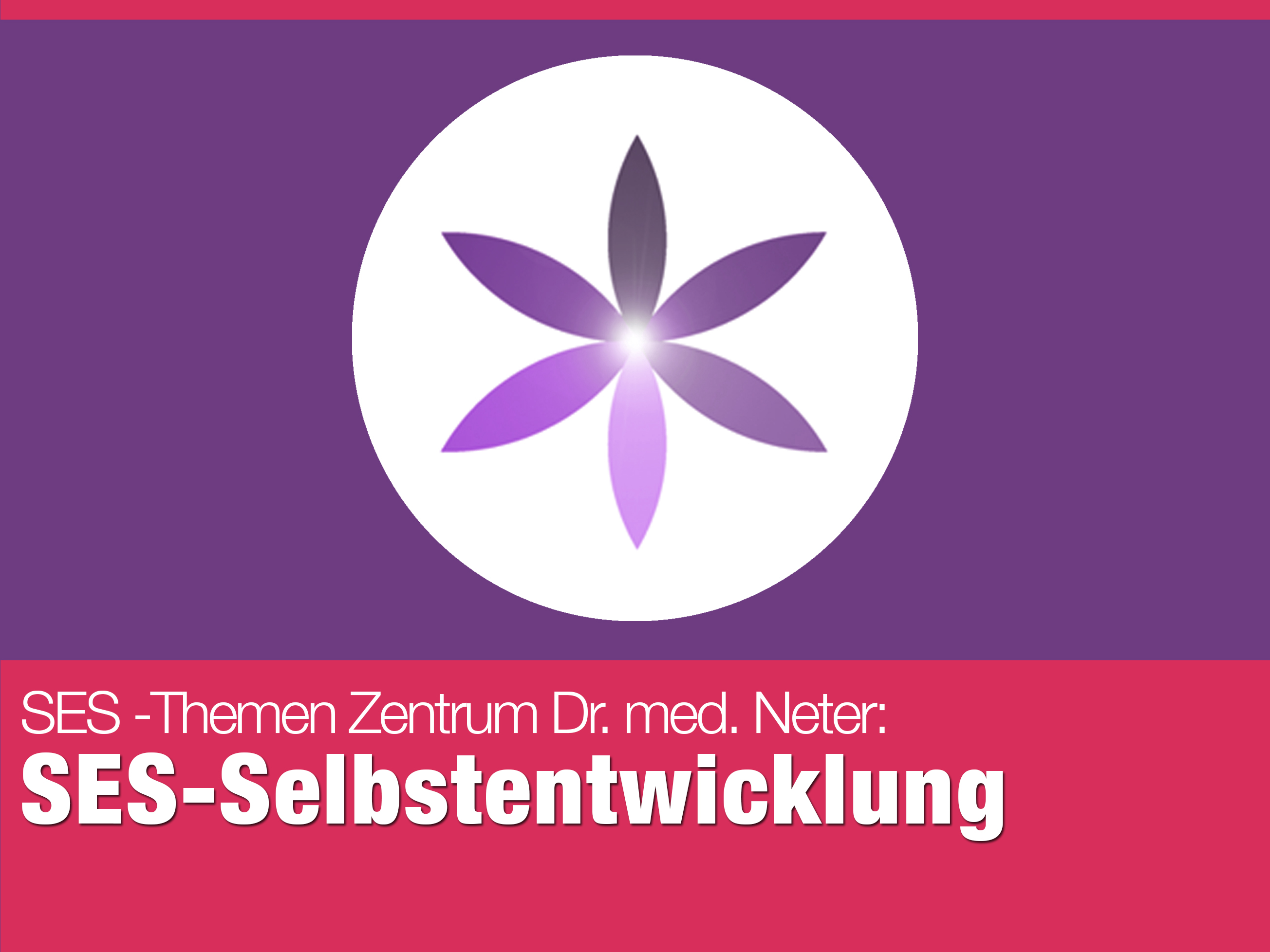 151110_SES_Selbstentwicklung