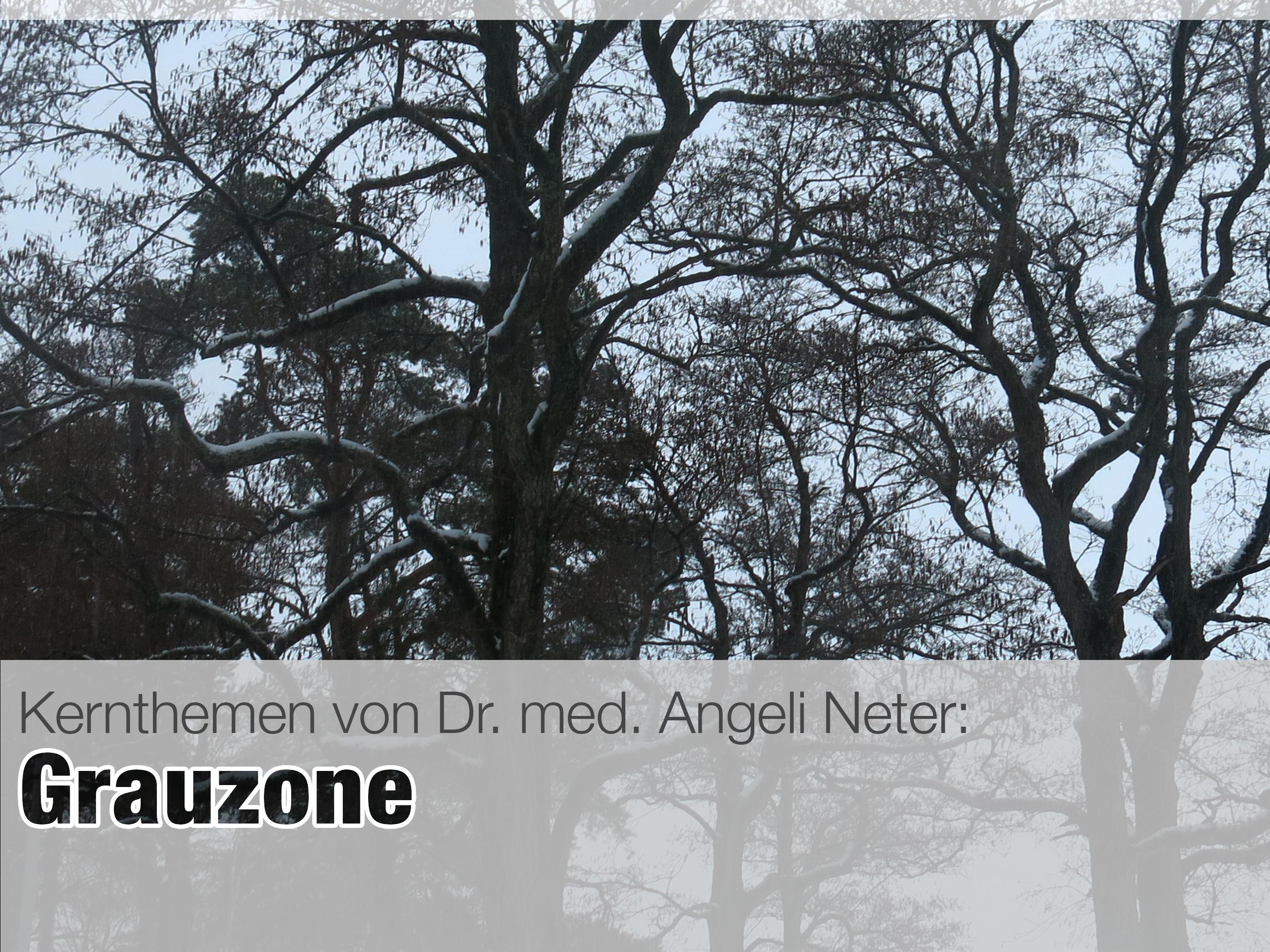 160210_Grauzone_Definition